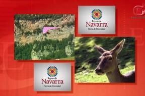 FITUR 2011 – Navarra
