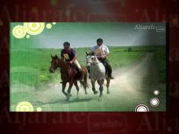 Guadalquivir a caballo, un viaje al corazón de Andalucía